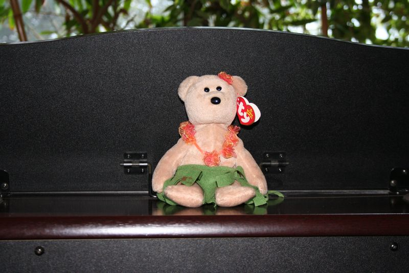 Looking closely in on the piano, we see the longtime mascot, familiar to those who went to Pacific, a hula bear.