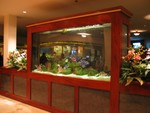 A fishtank divides the main hall lobby from the Islands Sushi and Pupu bar