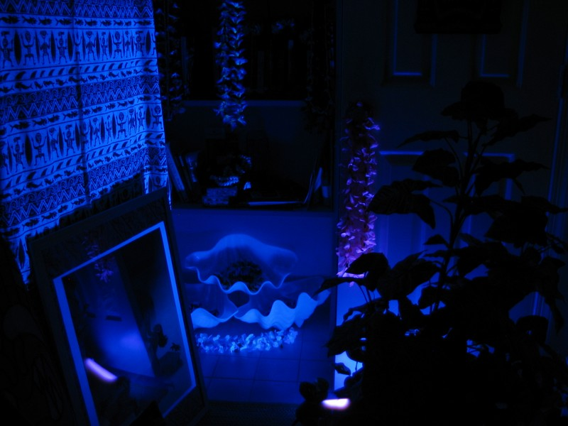 Upon entering the front door of the Lounge from outside our Hale, you enter the Kapu Gardens. This is actually black light, not blue- used in a 'intermediary space' way similar to the Kahiki. There are 'giant clam' shells, and plants here in this first entry area. Above the clamshells are Tabu Tomes- the Tiki and Grog books.