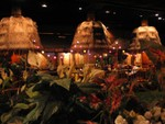 Highlight for Album: Tonga Room, San Francisco, CA