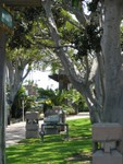 Typical of the parklike setting. Both the distant shaded gazebo and the close in street signs have stylized tiki poles.